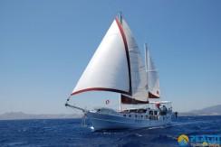 Small 4 Cabin Yacht 19